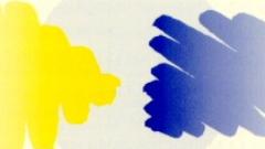 Imagen de la actividad